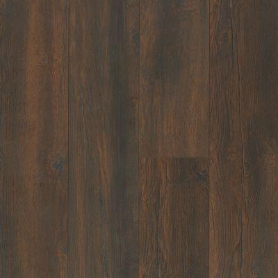 Shaw Floors SFA Ellenburg Dark Bronze 07033_SA597