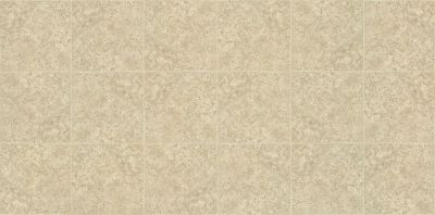 Shaw Floors Vinyl Residential Plateau Descendant 00108_SA605