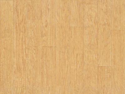 Shaw Floors Resilient Residential Plateau Trailblazer 00233_SA605