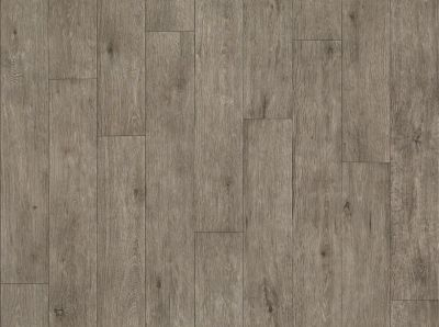 Shaw Floors Vinyl Residential Plateau Pathfinder 00551_SA605