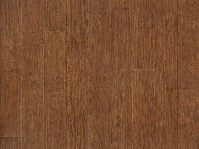 Shaw Floors Vinyl Residential Plateau Hearthboard 00804_SA605