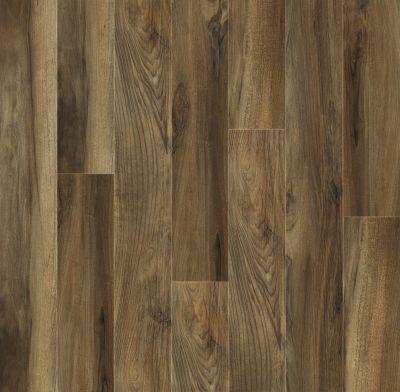 Shaw Floors SFA Destiny Plank Superstar 00776_SA606