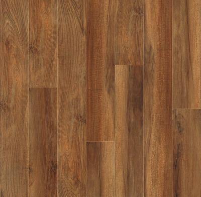 Shaw Floors SFA Destiny Plank Winners Circle 00820_SA606