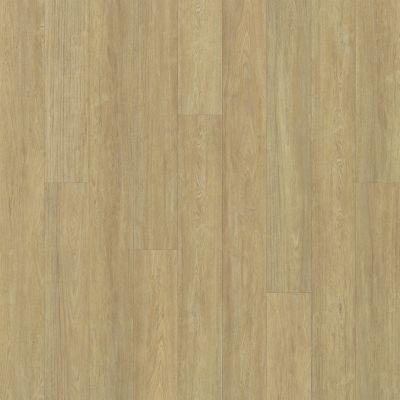 Shaw Floors SFA Largo Plank Cervati 00205_SA608
