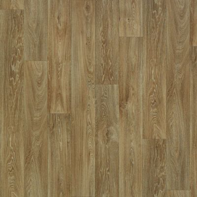 Shaw Floors Resilient Residential Chisholm Nebraska 00202_SA612