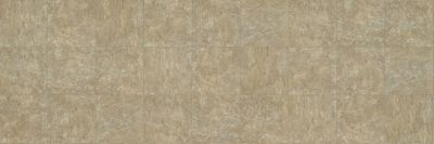 Shaw Floors Resilient Residential Hood 00110_SA623