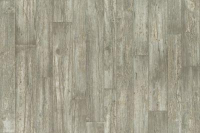 Shaw Floors Resilient Residential Baker 00523_SA623