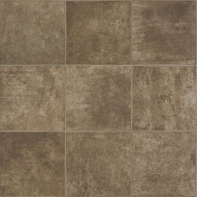 Shaw Floors Resilient Residential Hercules Pelion 00713_SA624