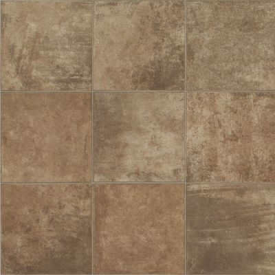 Shaw Floors Vinyl Residential Hercules Helicon 00805_SA624