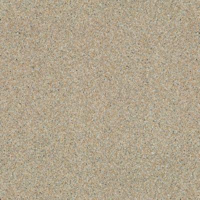 Shaw Floors Vinyl Residential City Park Granitized 00729_SA627