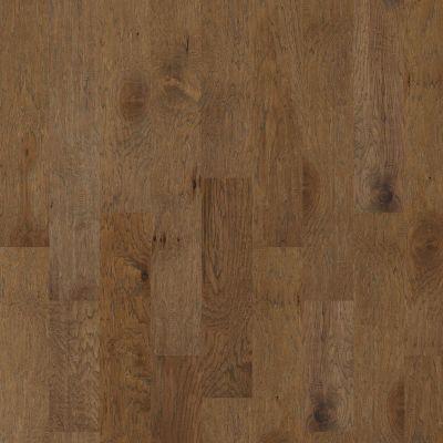 Shaw Floors SFA Continental Vintage 07016_SA630