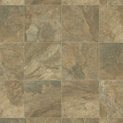 Shaw Floors Resilient Residential Vallejo Santa Rosa 00731_SA632