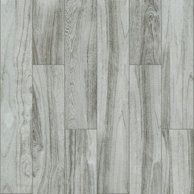 Shaw Floors SFA Reserve 8×48 Still 00500_SA941