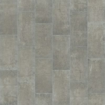 Shaw Floors SFA Exposure 12×24 Element 00550_SA946