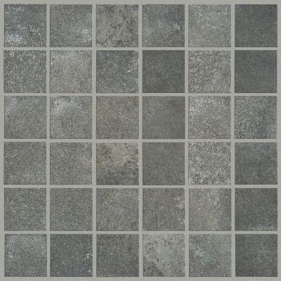 Shaw Floors SFA Exposure Mosaic Ink 00590_SA949