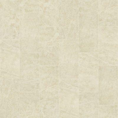 Shaw Floors SFA Vision 12×24 Polish Allure 00200_SA955