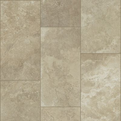 Shaw Floors SFA Form 12×24 Cast 00150_SA960