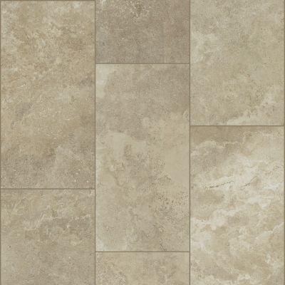 Shaw Floors SFA Form 12×24 Cast 00150_SA960