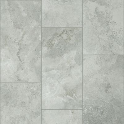 Shaw Floors SFA Form 12×24 Evolve 00500_SA960
