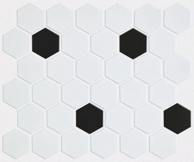 Shaw Floors SFA Dignity Hex 2 Mosaics White/Black 00190_SA996
