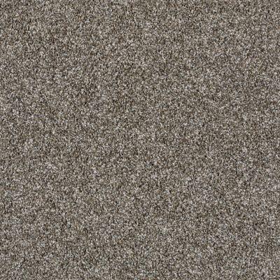 Shaw Floors Compound Bird Bath 00700_SM010