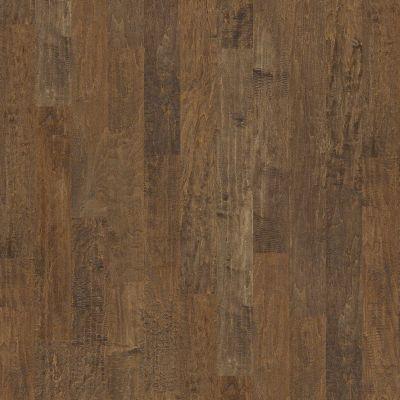 Shaw Floors Shaw Hardwoods Compile Bison 03000_SMW03