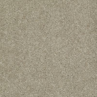 Shaw Floors Shaw On Shelf Topanga Beach Honeycomb 00200_SNS05