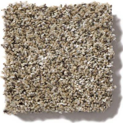 Shaw Floors Coral Beach II Sea Shell 00100_SNS28