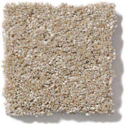 Shaw Floors Sand Dollar Beach II Sand Castle 00101_SNS30