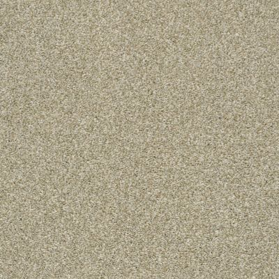 Shaw Floors Marina II Wheat Field 00142_SNS38