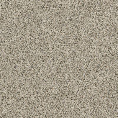 Shaw Floors Temescal River Rock 00701_SNS40