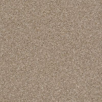 Shaw Floors Oxnard Travertine 00112_SNS42