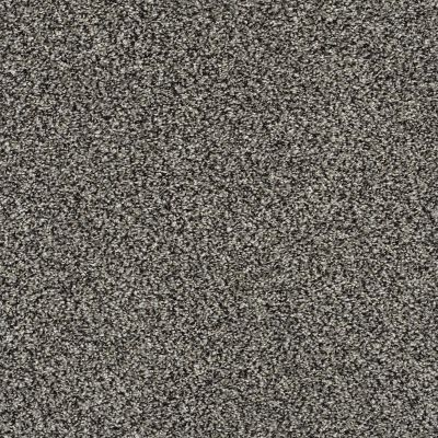 Shaw Floors Venice Beach Meteorite 00501_SNS43