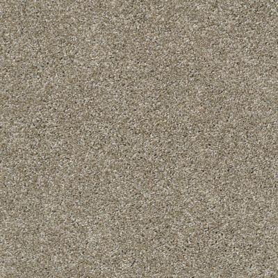 Shaw Floors Venice Beach Wild Truffle 00710_SNS43