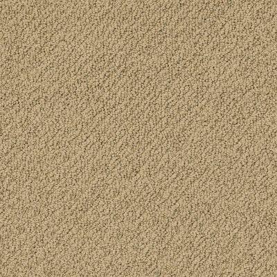 Shaw Floors Playa Azul II Grounded 00796_SNS45