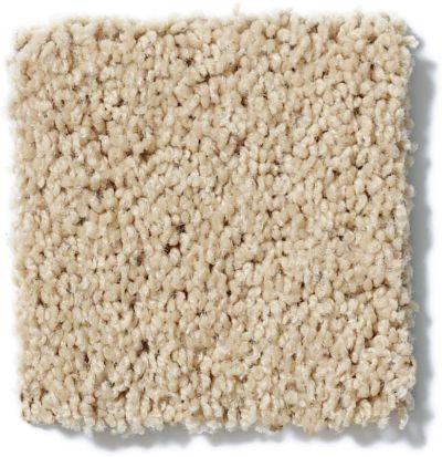 Shaw Floors Shaw On Shelf Banyans Wild Straw 00106_SOS03