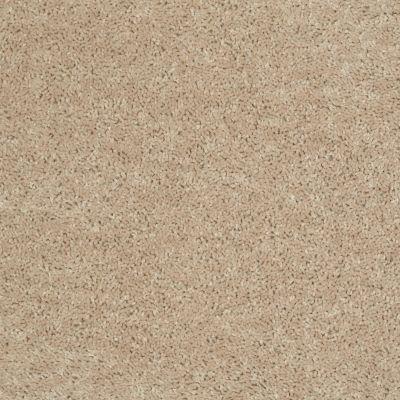 Shaw Floors Shaw On Shelf North Shore I Flax Seed 00103_SOS33