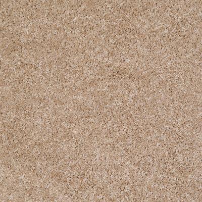 Shaw Floors Silver Strand Macaroon 00104_SOS54