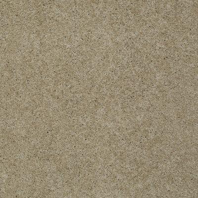 Shaw Floors Shaw On Shelf Playa Blanca Clay Stone 00108_SOS81