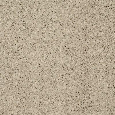 Shaw Floors Shaw On Shelf Playa Blanca Stucco 00129_SOS81