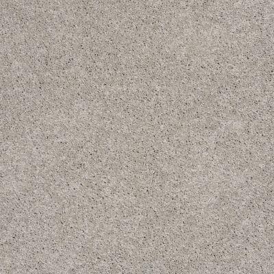 Shaw Floors Shaw On Shelf Playa Blanca Sheer Silver 00500_SOS81