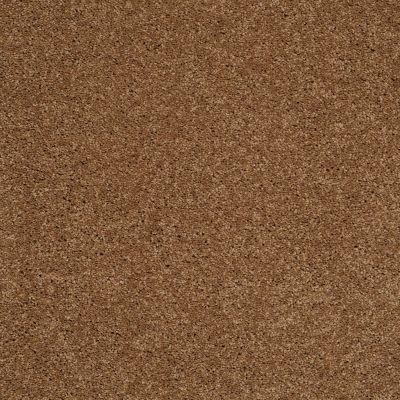 Shaw Floors Shaw On Shelf Playa Blanca English Toffee 00703_SOS81