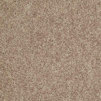 Shaw Floors Shaw On Shelf Diani (s) Pale Shadow 00106_SOS88