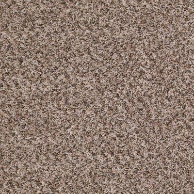 Shaw Floors Shaw On Shelf Diani (t) Linen 00112_SOS89