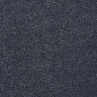 Philadelphia Commercial Special Project Commercial Sp845 Provence Gray 65904_SP845