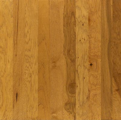 Shaw Floors Shaw Hardwoods Brushed Suede Buckskin 00215_SW226