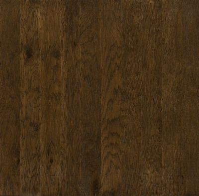 Shaw Floors Shaw Hardwoods Brushed Suede Bison 00944_SW226