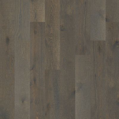 Shaw Floors Shaw Hardwoods Castlewood Oak Hearth 00519_SW485