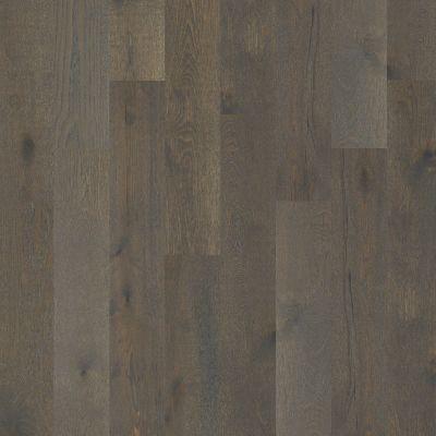 Shaw Floors Shaw Hardwoods Castlewood Oak Hearth 00519_SW485