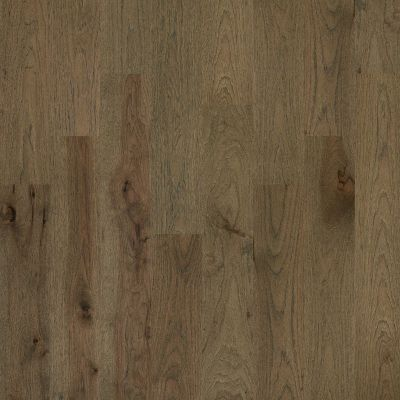Shaw Floors Shaw Hardwoods Castlewood Hickory Romanesque 07018_SW486
